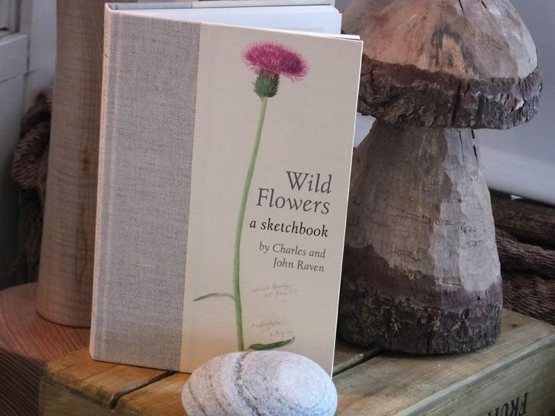 Wild Flowers a Sketchbook