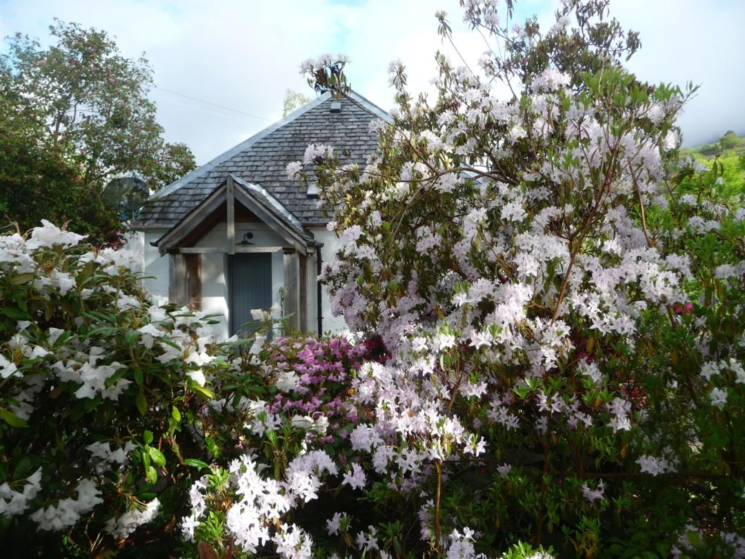 Spring And The Garden Full Of Flowers Ardtornish Estate